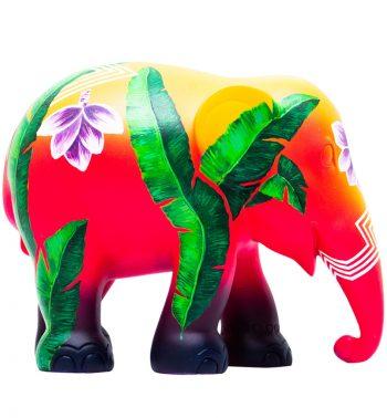 Elephas Musa 75CM